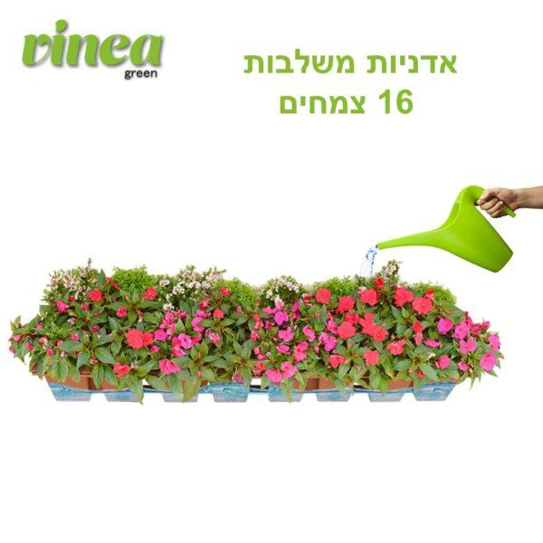אדניות משתלבות 8 צמחים